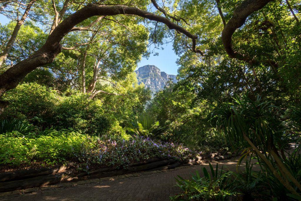 Kristenbosch-Kaapstad