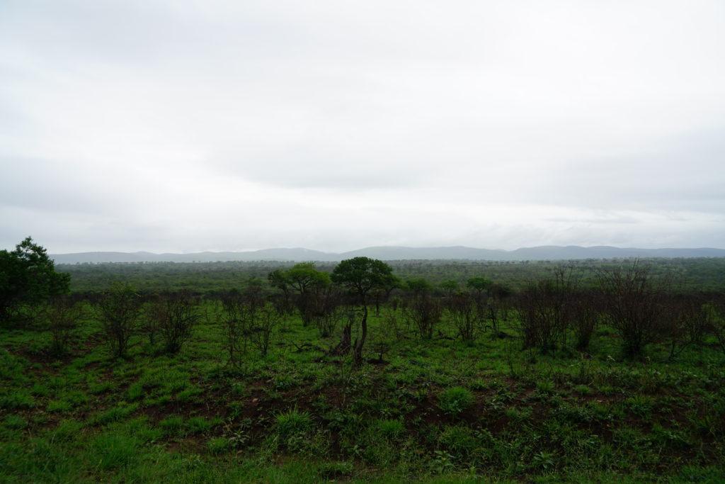 Mkhuze-Game-Reserve